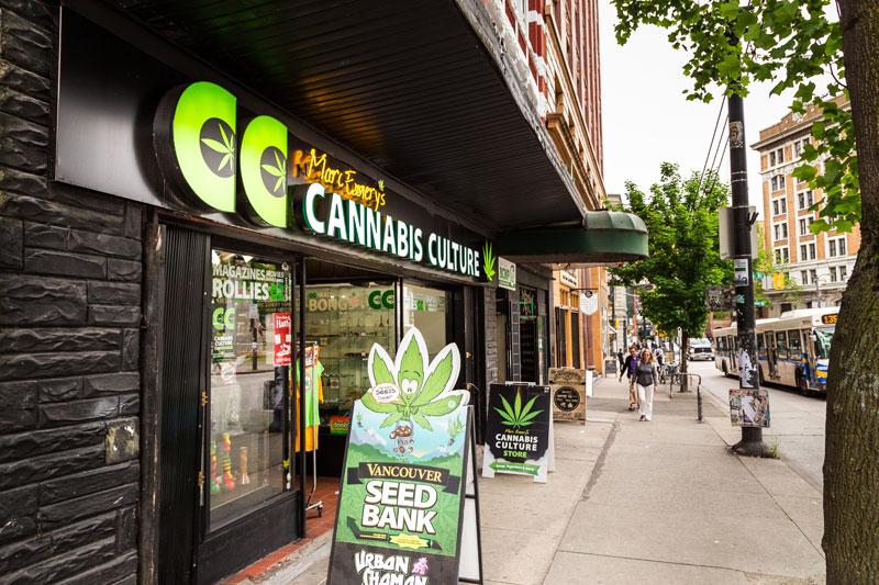 marijuana tourism jobs