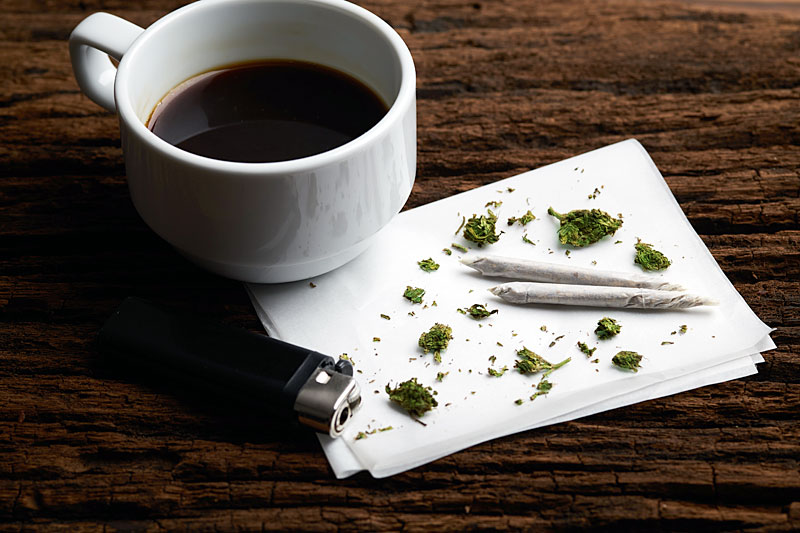 From Barista to Budtender: How to Make the Switch