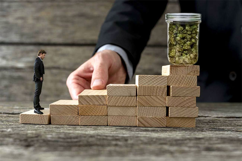 Marijuana Jobs for Entrepreneurs