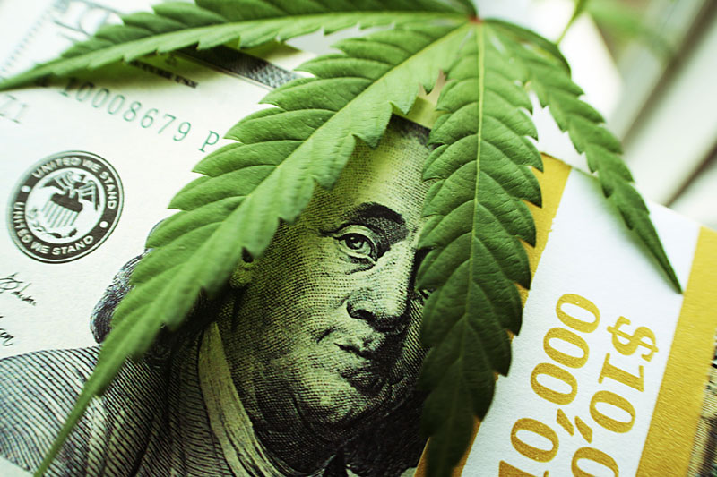 Marijuana Dispensary Salaries