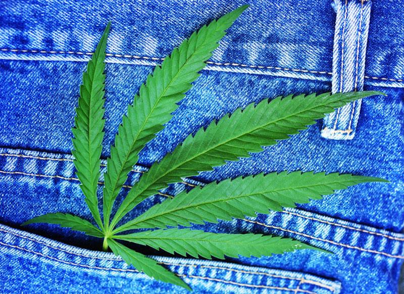 Marijuana Employment
