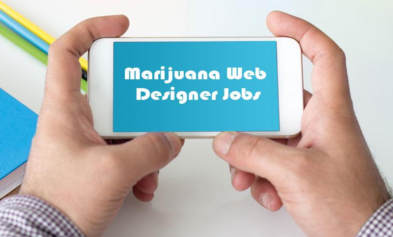 marijuana web designer jobs