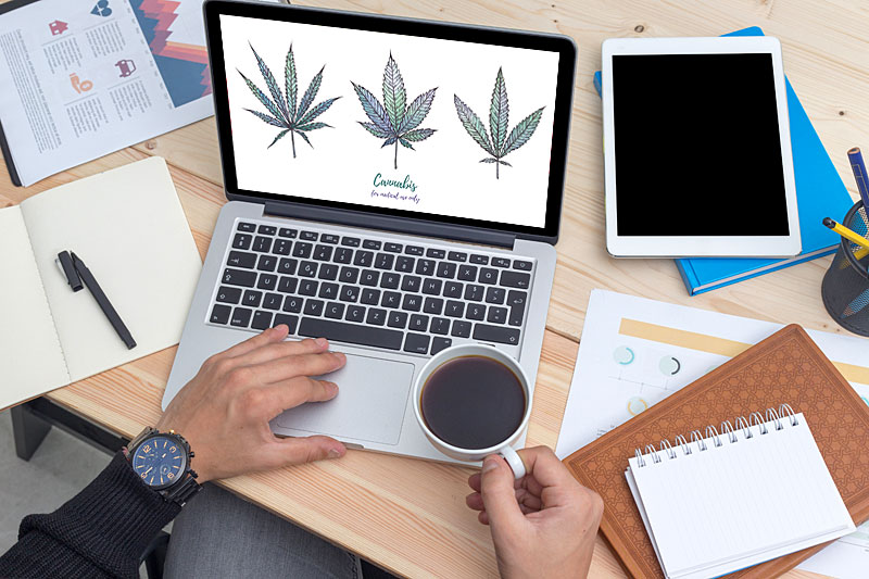 marijuana writing jobs