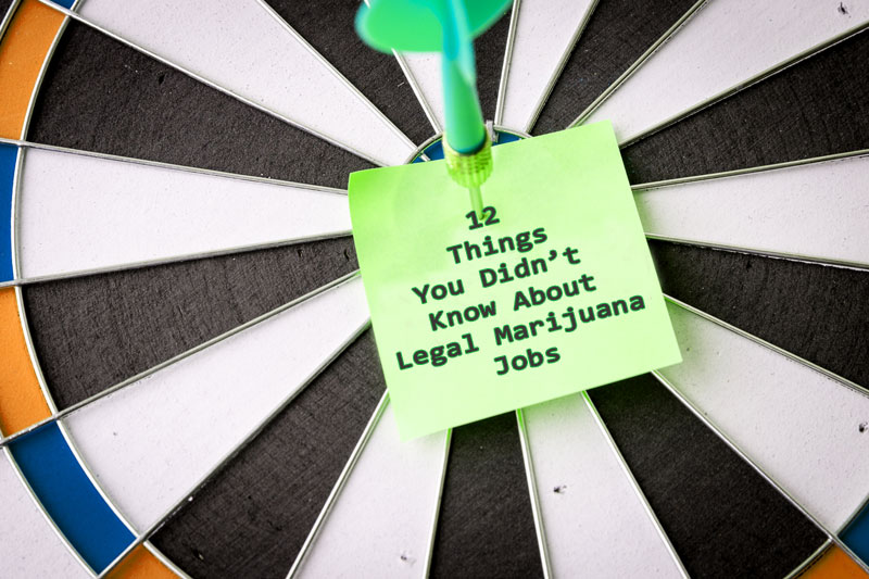12 Things You Didn't Know About Legal Marijuana Jobs