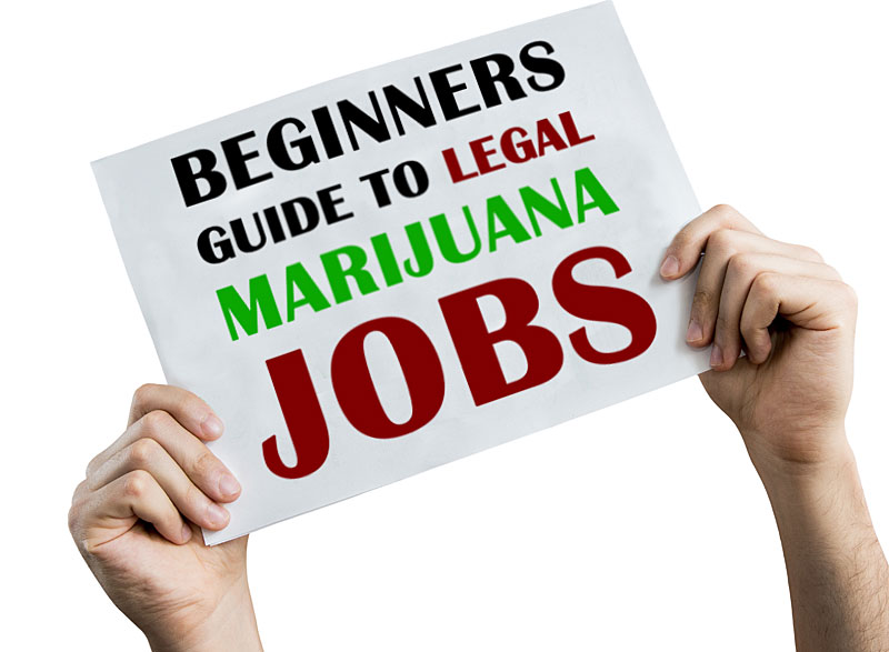 legal marijuana jobs